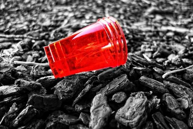 EPR Plastic Authorization